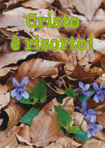 Volantino_2009_1